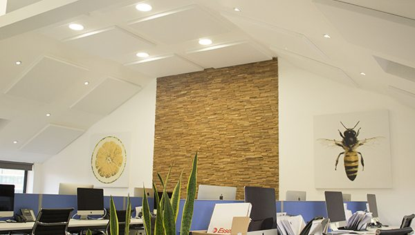 Soundproofing Offices and Conference Rooms